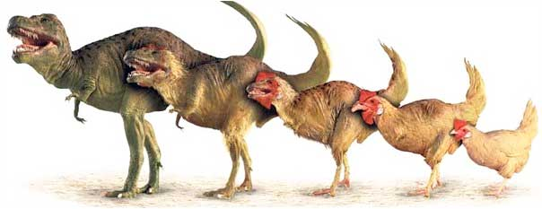 Жизнь динозавров prehistoric