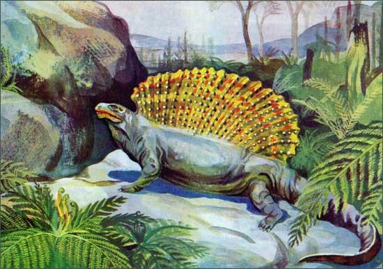 Картинки по запросу Эдафозавр