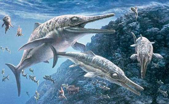 Картинки по запросу Ихтиозавр фото