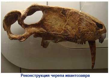 Картинки по запросу Ивантозавр, фото ивантозавры