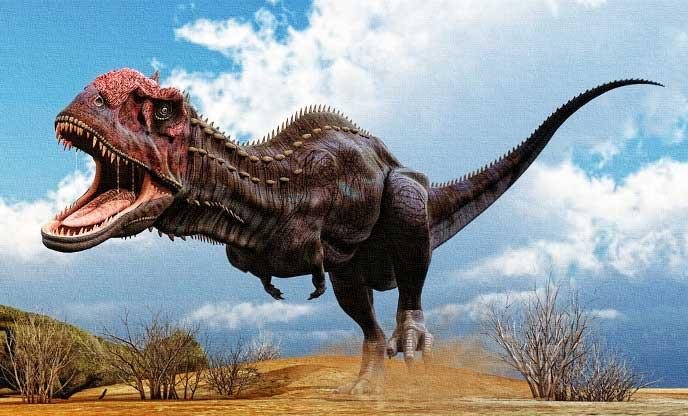 Картинки по запросу Майюнгазавр