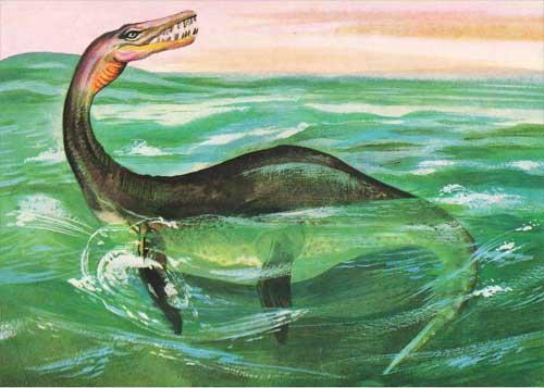 Картинки по запросу Плезиозавр фото